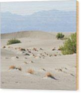 Sand Dunes Plants Hills Wood Print