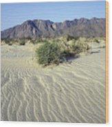 Sand Dunes & San Ysidro Mountains At El Wood Print