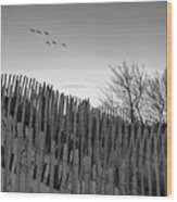 Dune Fences - Grayscale Wood Print