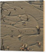 Sand Patterns 1 Wood Print