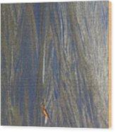 Sand Patterns At Moeraki Wood Print