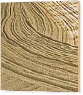 Sandesigns Wood Print