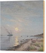 Sandhamn In The Sunset Wood Print