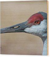 Sandhill Crane 8 Wood Print