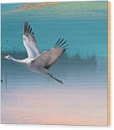Sandhill Crane And Misty Marshes Wood Print