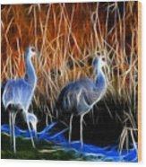 Sandhill Cranes Pair Fractal Wood Print