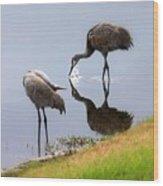 Sandhill Cranes Reflection On Pond Wood Print