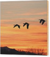 Sandhill Sunrise 2 Wood Print