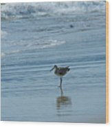 Sandpiper On The Beach Wood Print