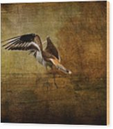 Sandpiper Piping Wood Print
