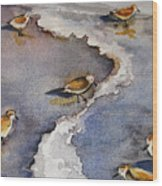 Sandpiper Seashore Wood Print