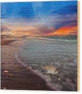 Sandpiper Sunrise Wood Print