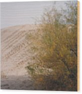 Sands Of Monahans Wood Print