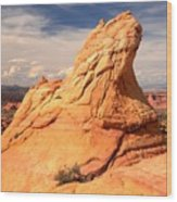 Sandstone Gopher Wood Print