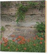 Sandstone Lilies Wood Print
