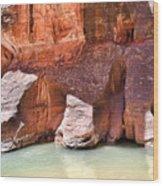 Sandstone Toes In The Virgin River Wood Print