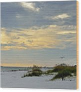 Sandy Alabama Beach Wood Print