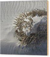 Sandy Ball Wood Print