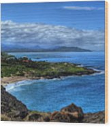 Sandy Beach Park-oahu Wood Print
