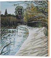 Sandy Reeds Wood Print