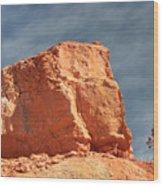 Sandy Rock In Morning Light Wood Print