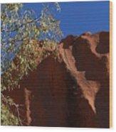 Sandy Rock Wood Print