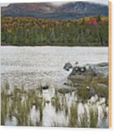 Sandy Stream Pond View Of Baxter Peak In Baxter State Park Maine Wood Print by Brendan Reals
