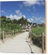 Sandy Trail Miami Florida Wood Print