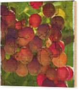 Sangiovese Grapes Wood Print
