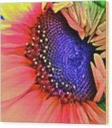 Sangria Wood Print