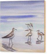 Sanibel Beach And Birds Wood Print