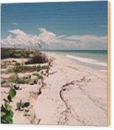 Sanibel Beach I Wood Print