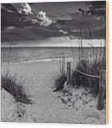 Sanibel Island Beach Access In Black And White Wood Print