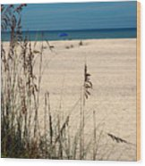 Sanibel Island Beach Fl Wood Print