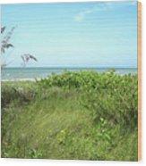 Sanibel Island Wood Print