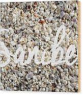 Sanibel Island Seashells Wood Print