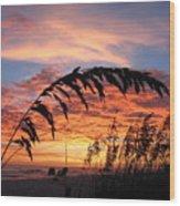 Sanibel Island Sunset Wood Print by Nick Flavin