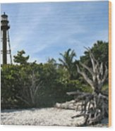Sanibel Light And Driftwood Wood Print