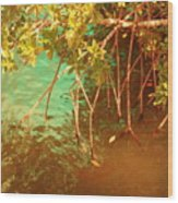 Sanibel Mangroves Wood Print