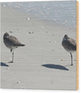 Sanibel's Gulls Wood Print