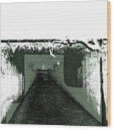 Sanitarium Wood Print