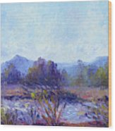 Santa Ana River Wood Print
