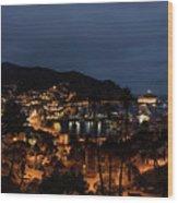 Santa Catalina Island Nightscape Wood Print