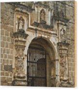 Santa Clara Antigua Guatemala Ruins 2 Wood Print
