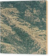 Santa Clara County Real Estate Wood Print