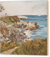 Santa Cruz By The Bay Wood Print by Ann Caudle