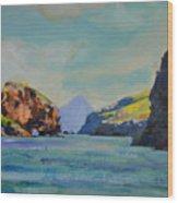 Santa Cruz Island Wood Print