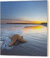 Santa Cruz Starfish Wood Print
