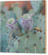 Santa Fe Prickly Pear Cactus Wood Print