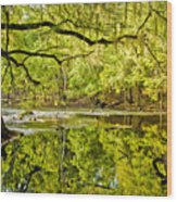 Santa Fe River Wood Print